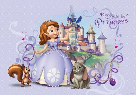 Princess Sofia girl's room wallpaper murals
